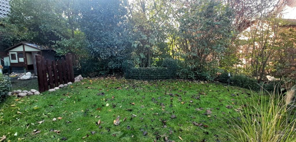 Kleine Gartenwiese mit Laubblätter