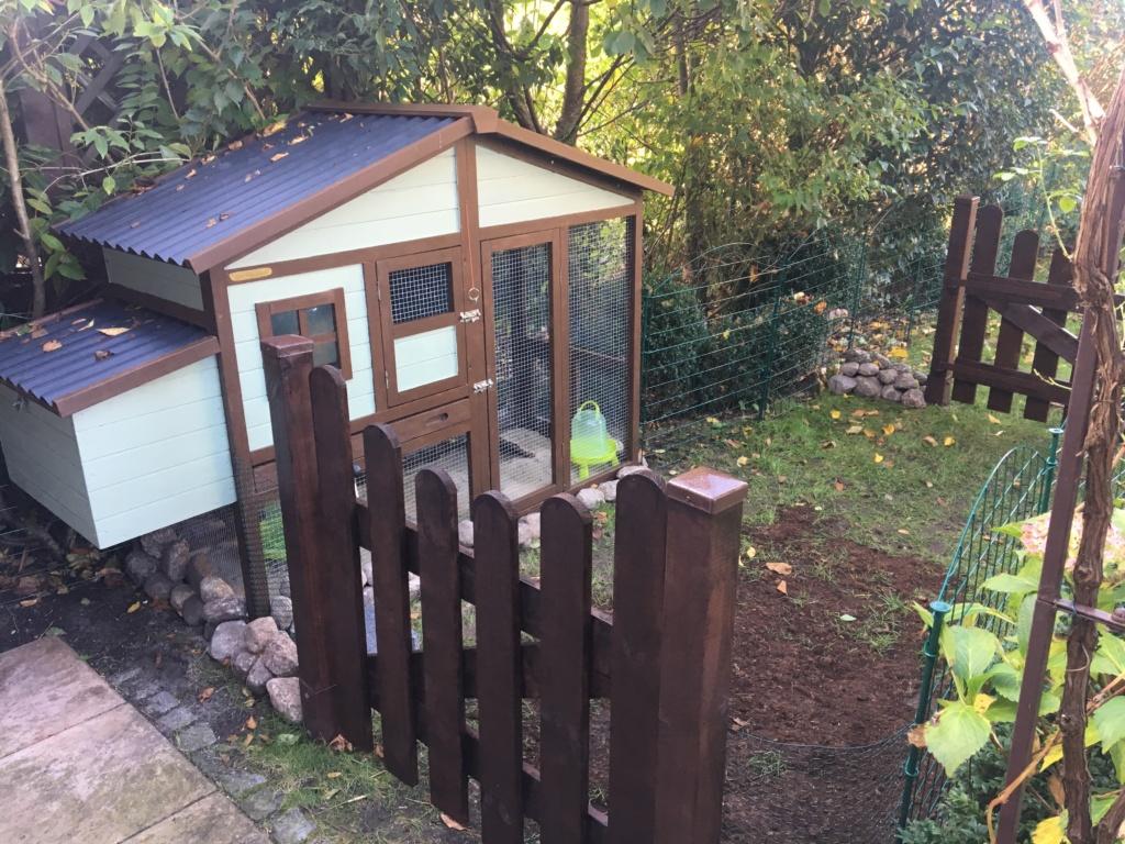 Abgetrennter Berich für Hühnerstall und Hühnerauslauf im Kleingarten